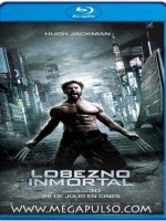 The Wolverine 2013 – 720p Español Latino HD